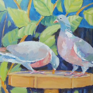 Claire Lovell Pigeons